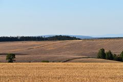 Rural landscape with agricultural fields. The field is harvested. Landscape at sunset. Hilly terrain. Royalty Free Stock Images