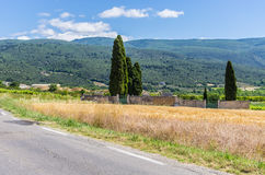 Rural landscape. Agricultural landscape in France with a cemetery at the corn field Stock Image