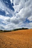 Rural landscape, agriculture farmland with crops, Poland, Europe Stock Images