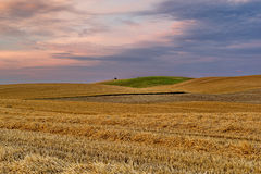 Rural landscape, agriculture farmland with crops, Poland, Europe Stock Photo