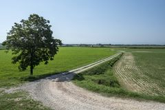 Rural landscape along the Po cycle path Royalty Free Stock Photography
