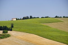 Summer landscape in Marches Italy near Appignano. Rural landscape along the road from Appignano to Montecassiano Ancona, Marches, Italy, at summer Royalty Free Stock Photo