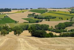 Summer landscape in Marches Italy near Appignano. Rural landscape along the road from Appignano to Montecassiano Ancona, Marches, Italy, at summer Royalty Free Stock Images