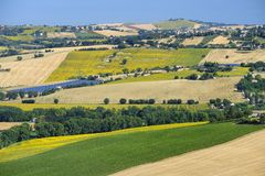 Summer landscape in Marches Italy near Filottrano. Rural landscape along the road from Filottrano to Appignano Ancona, Marches, Italy, at summer Stock Images