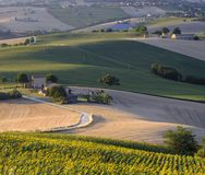 Summer landscape in Marches Italy near Filottrano. Rural landscape along the road from Filottrano to Appignano Ancona, Marches, Italy, at summer Royalty Free Stock Image
