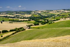 Summer landscape in Marches Italy near Ostra Royalty Free Stock Images