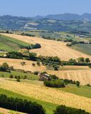 Summer landscape in Marches Italy near Ostra Royalty Free Stock Photos