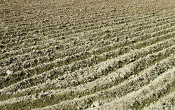 Rural landscape arable plow field. Rural area, agriculture, countryside Stock Images