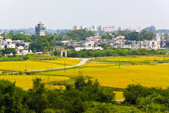 Rural landscape around at Kaiping Diaolou in China, Unesco world Royalty Free Stock Photography