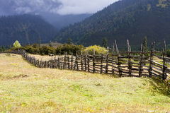Rural landscape of autumn meadow Stock Photo