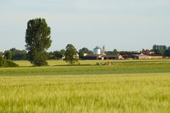 Rural landscape in the background view of the buildings. Royalty Free Stock Photo