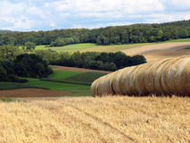 Rural landscape with bales of hay Royalty Free Stock Photos