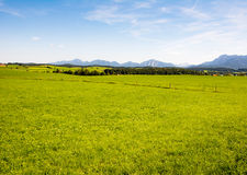 Rural landscape in Bavaria Stock Photography