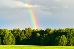 Rural landscape with beautiful rainbow after summer rainstorm over the forest. Royalty Free Stock Images