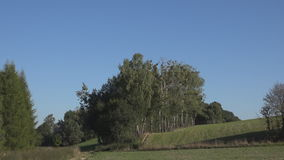 Rural landscape blue sky and the trees stock video footage