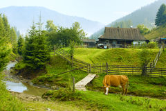 Rural landscape in Carpathian Mountains Stock Photo