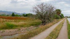 Rural landscape by Castellon Stock Photography