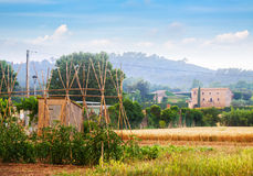 Rural landscape of Catalonia Stock Image