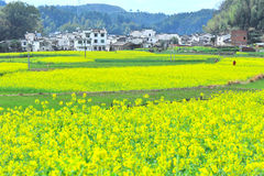 Rural landscape at china Royalty Free Stock Images