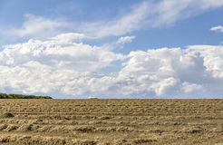 Rural landscape with clouds Royalty Free Stock Photos