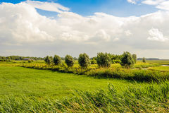 Rural landscape and a cloudy sky Royalty Free Stock Images