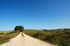 Rural landscape and country road Royalty Free Stock Photos