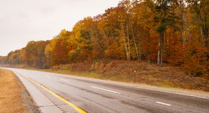 Rural Landscape Country Road Highway Fall Autumn Season Leaves Falling royalty free stock photo