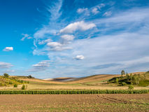 Rural landscape. Countryside landscape with arable fields Royalty Free Stock Photo
