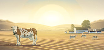 Rural landscape and cow. Royalty Free Stock Photo