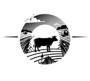 Rural landscape with cow stands on field. Illustration in the engraving manner Stock Photo