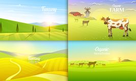 Rural landscape and cows. Farm Agriculture. Vector illustration. Poster with meadow, Countryside, retro village for info. Graphic, websites. Milk and dairy royalty free illustration