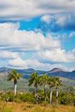 Rural landscape in Cuba Royalty Free Stock Photo