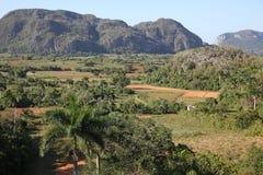 Rural landscape in Cuba, Vinales Stock Image