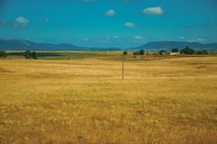 Rural landscape with cultivated fields near the Monfrague National Park. Rural landscape with cultivated fields, farmhouses and hills in a sunny day near the stock image