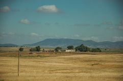 Rural landscape with cultivated fields near the Monfrague National Park. Rural landscape with cultivated fields, farmhouses and hills in the background, in a stock photos