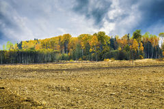 Rural landscape with dark sky Royalty Free Stock Photography