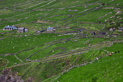 Rural landscape on Dingle Peninsula Royalty Free Stock Photos