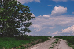 Rural landscape. Dirt road passes through green field, sky with Stock Photography