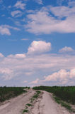 Rural landscape. Dirt road passes through green field, sky with Royalty Free Stock Photography