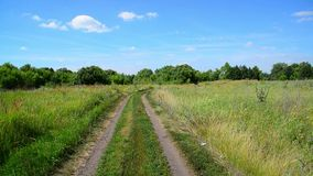 Rural landscape with dirt road in Russia. Rural landscape with a dirt road in Russia stock footage