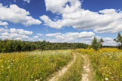 Rural landscape with dirt road sunny day Royalty Free Stock Photos