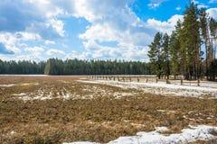 The rural landscape. Stock Images