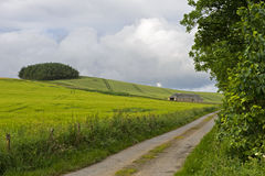 Rural landscape in the East Neuk of Fife Royalty Free Stock Photo