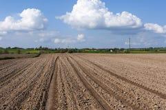 Rural Landscape Eastern Poland Royalty Free Stock Image