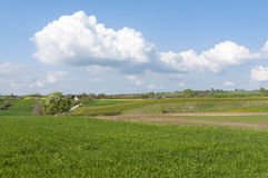 Rural Landscape Eastern Poland Stock Image