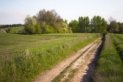 Rural Landscape Eastern Poland Royalty Free Stock Photos