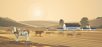 Rural landscape. Farm. Vector landscape . The farm  the morning, dawn, cows grazing on the field Royalty Free Stock Photos