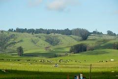 Rural Landscape Farmhouse Royalty Free Stock Photos