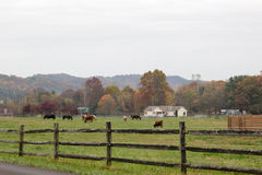 Rural Landscape Farmhouse Stock Photos