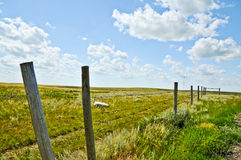 Rural Landscape with Fence Along Farmland. Barbed wire fence with wooden fence posts diagonally leading into the picture along farmland. Bright blue sky and Royalty Free Stock Photo